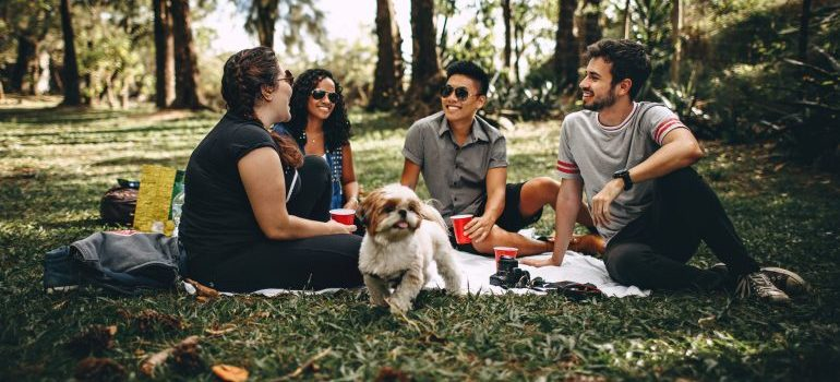 People hanging out in the park with a dog