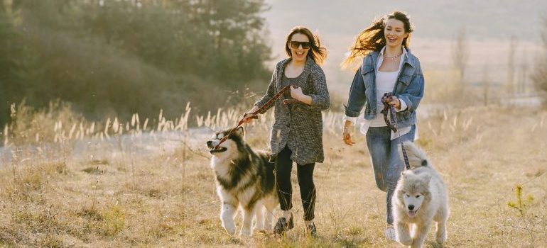 Two women running with their dogs