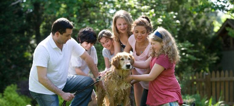 a family gathered around a dog