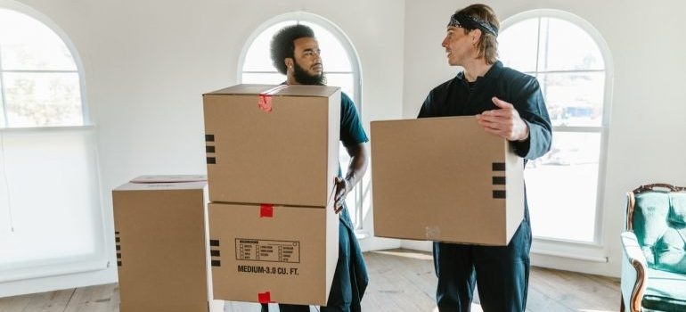 movers holding moving boxes